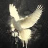 Pytanie do fanów RPG'ów - ostatni post przez HeavenMaker